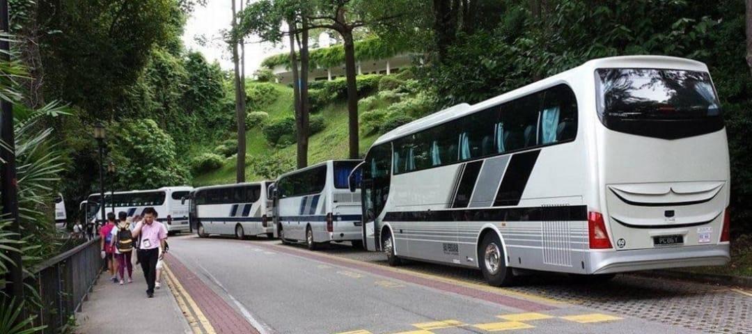 coach7